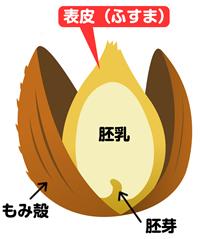 fusuma_1j